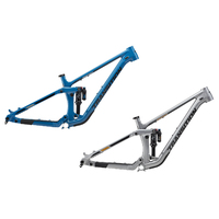 Transition Sentinel Alloy Frame